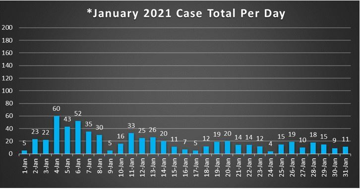 January 2021 Case Total Per Day 1-31-21